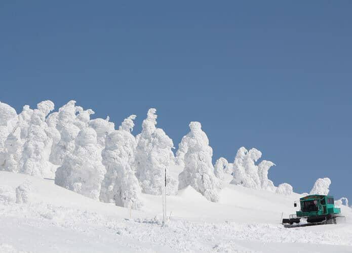下り便雪上車1台と樹氷