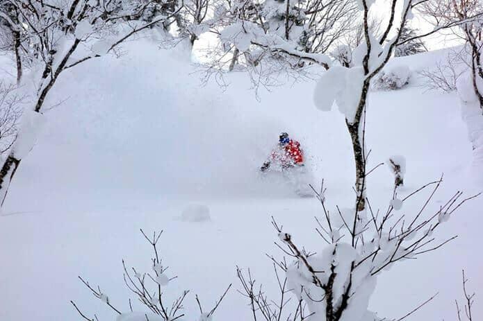 すみかわスノーパーク ゲレンデを滑走するスキーヤー