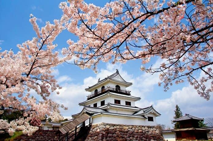 白石桜まつり