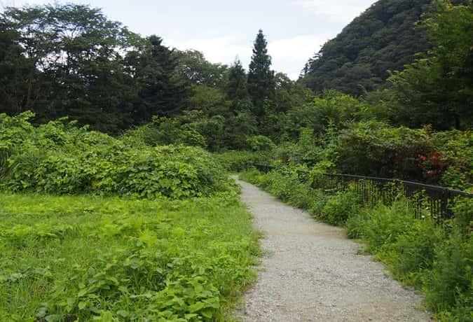 鳳鳴四十八の滝 遊歩道