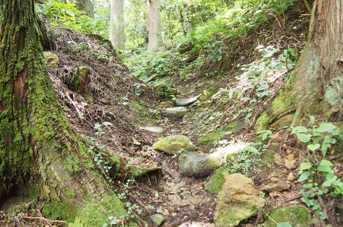 穴薬師 登山道