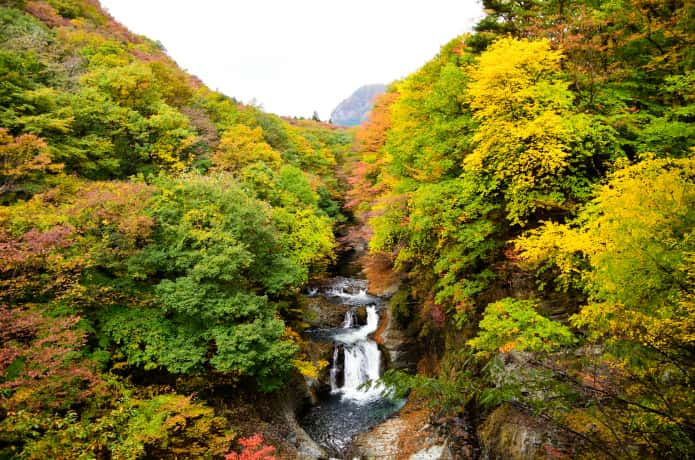 鳳鳴四十八滝 紅葉