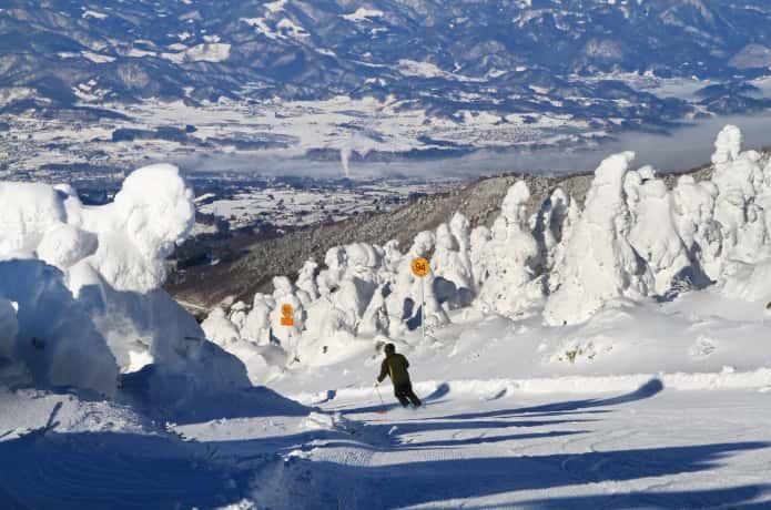 蔵王 樹氷 スキー