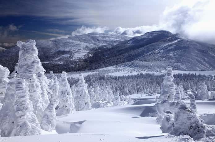 宮城蔵王 樹氷