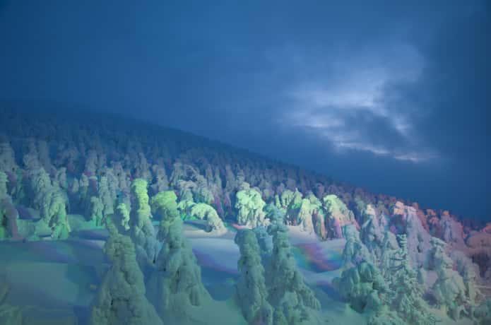 蔵王 樹氷 ライトアップ