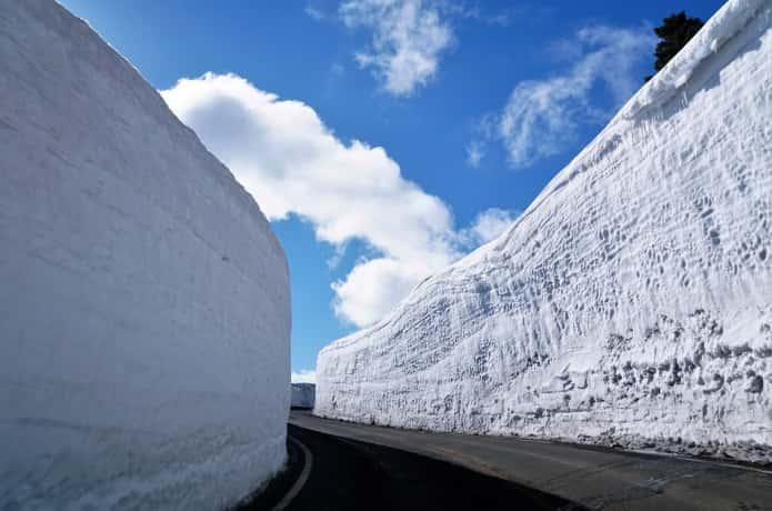 蔵王 雪の回廊