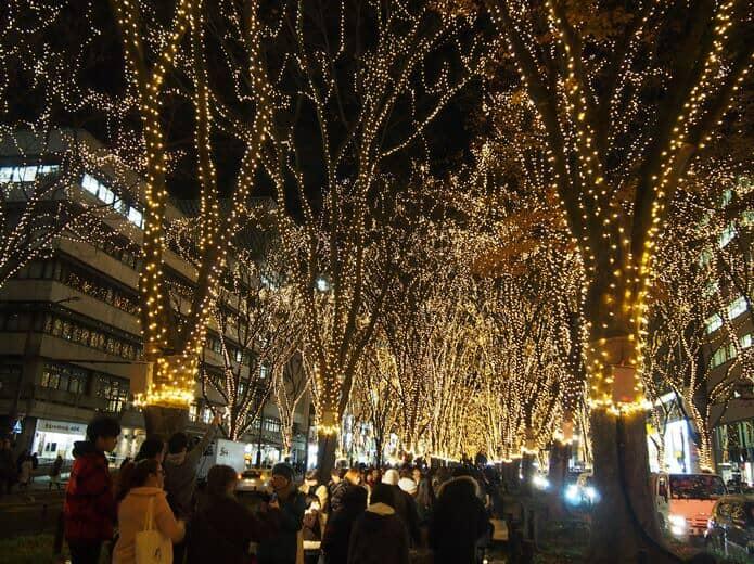 仙台光のページェント 緑道
