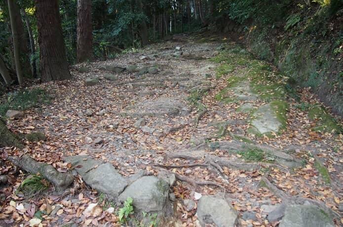 鹽竈神社 神聖な参道