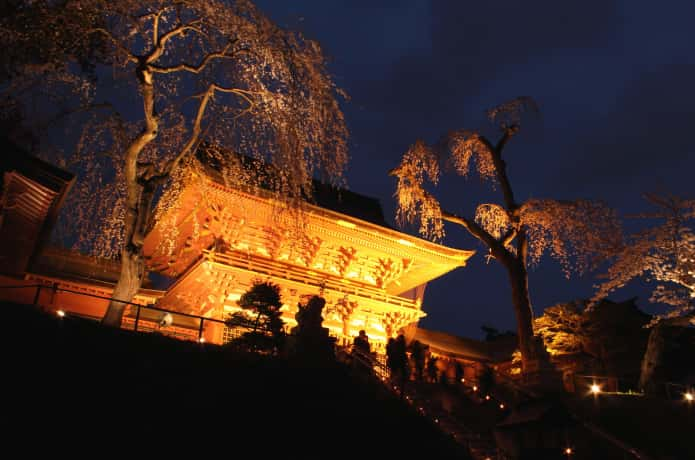 ライトアップされた鹽竈神社の社殿