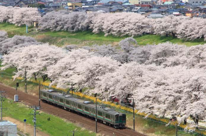千桜橋の下を走るJR東北本線JR東北本線