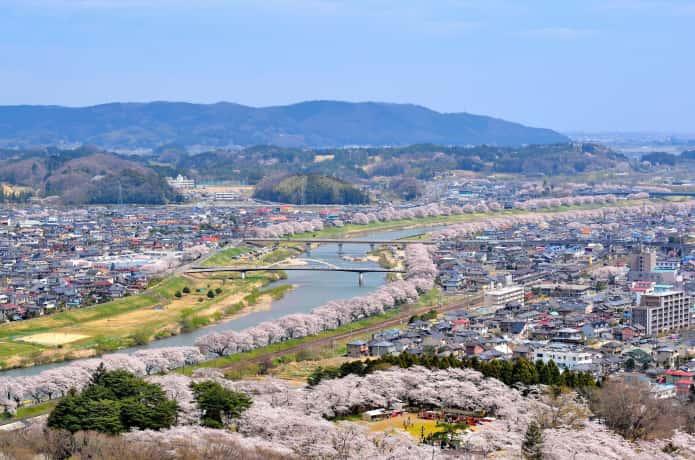船岡城址公園の山頂から見た一目千本桜