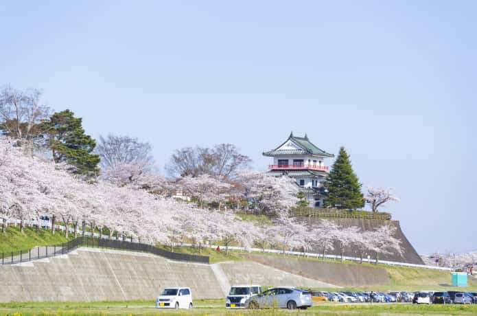 涌谷城跡と桜並木