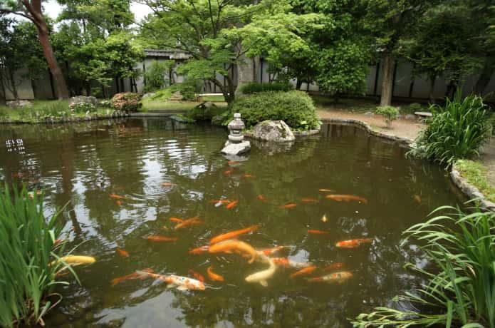石巻 斎藤氏庭園