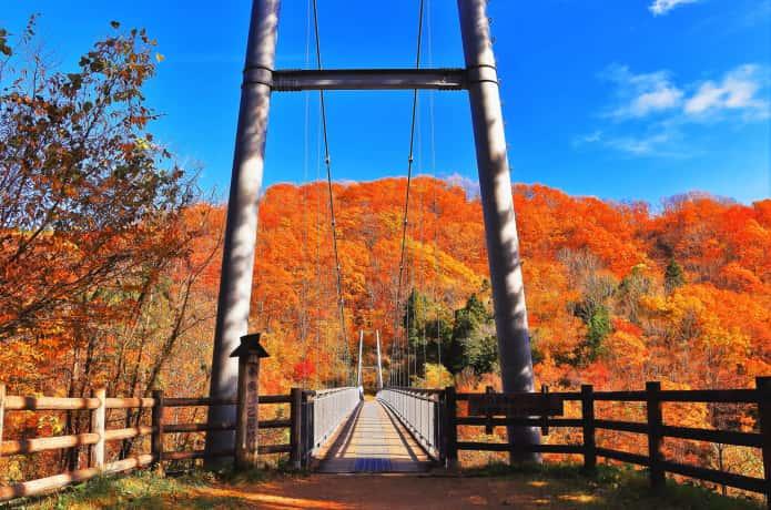 横川渓谷とやまびこ吊り橋