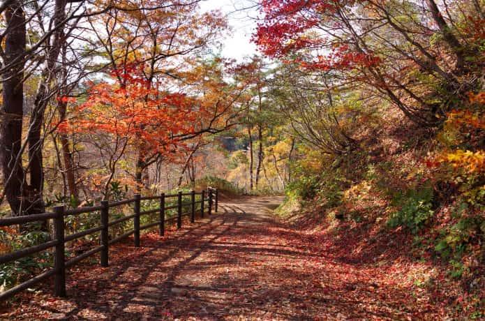 鳴子峡 大深沢橋 遊歩道