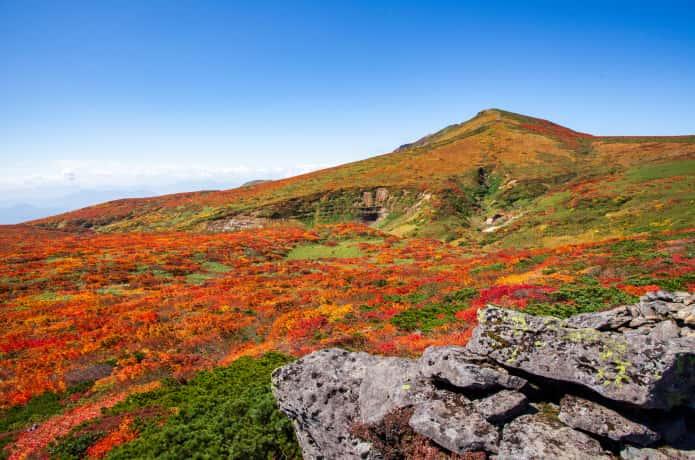 秋の栗駒山
