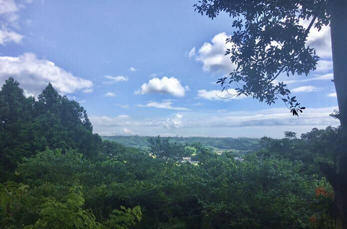 利府城跡からみえる景色