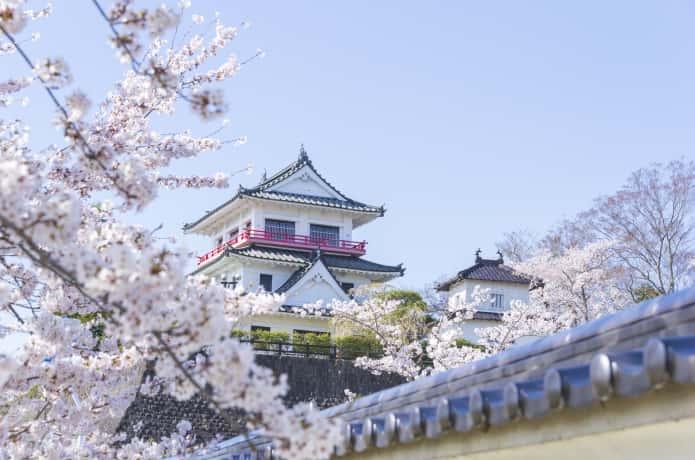 涌谷城と桜