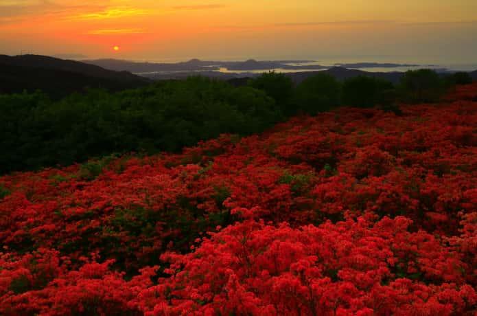 徳仙丈山 夕日
