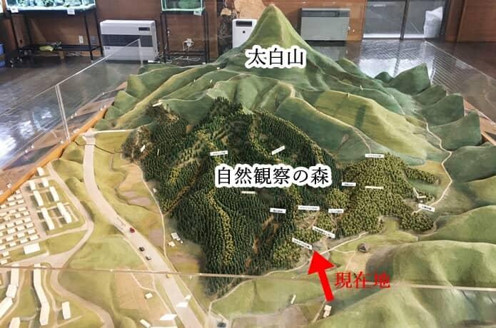 太白山 模型