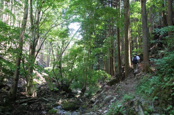 田束山 行者の道