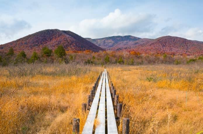 栗駒山と世界谷地原成生花園