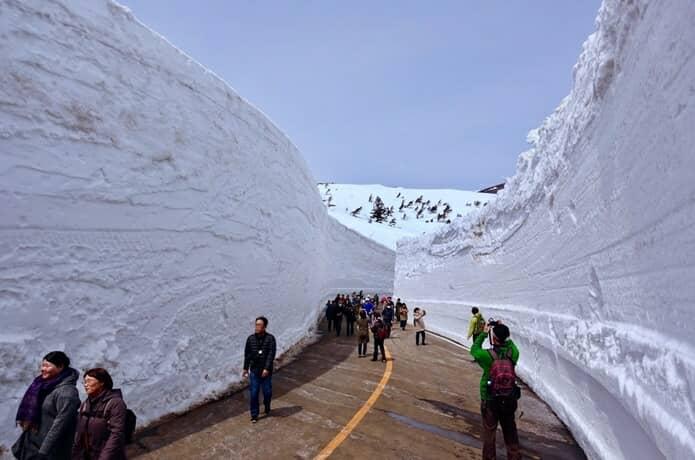 雪の壁 蔵王町