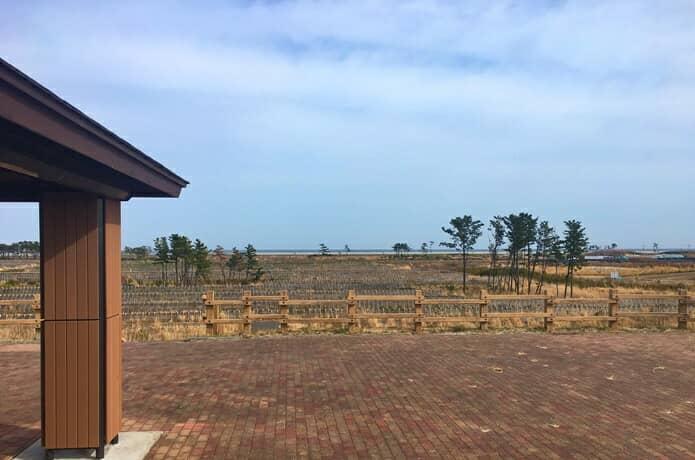 岩沼海浜緑地 展望台からのぞむ景色