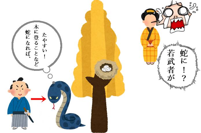 蛇と銀杏伝説 宮城