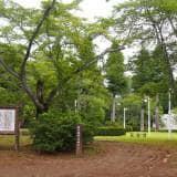 川崎城 公園