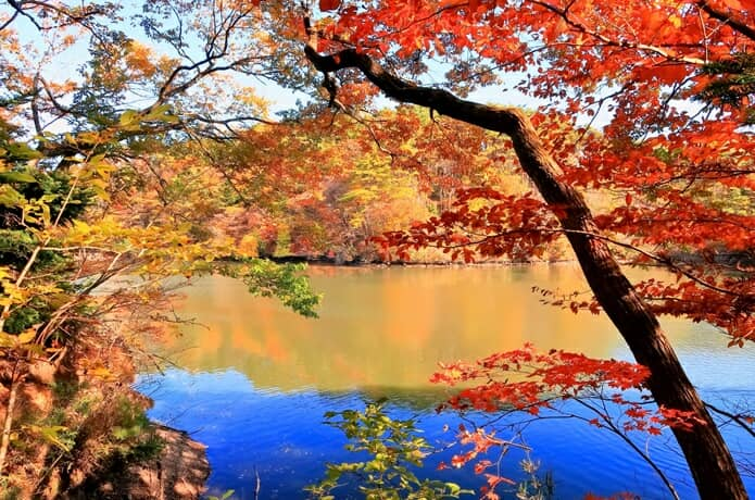 仙台 水の森公園