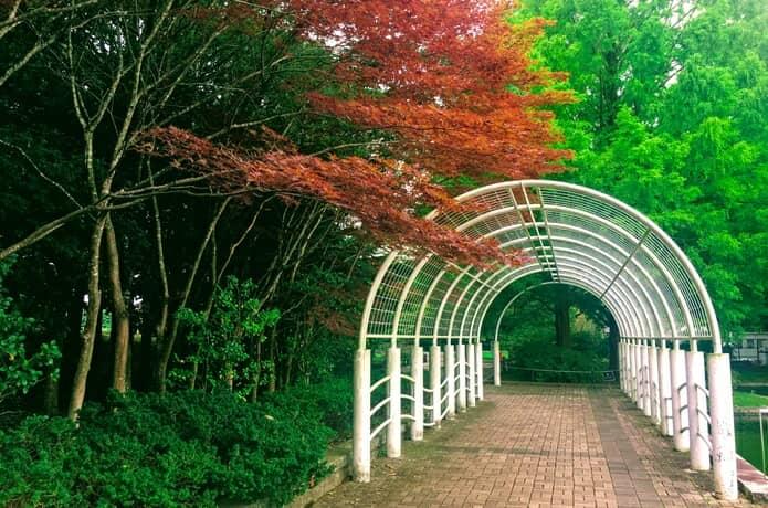 七北田公園 白いアーチ