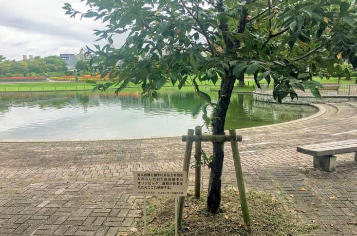 羽生結弦選手の連覇記念植樹
