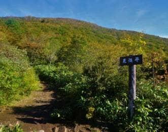 見返平からのぞむ泉ヶ岳の山頂
